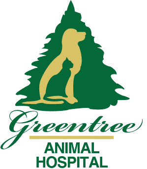 Greentree Animal Hospital has digital radiology equipment