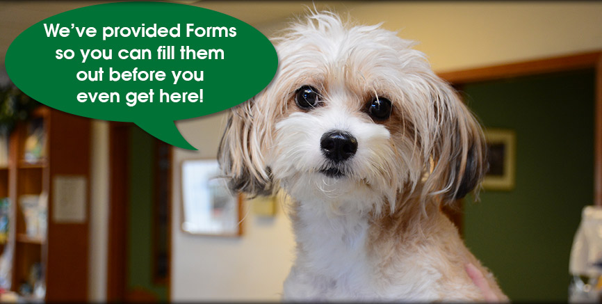 Referral Forms at Greentree Animal Hospital