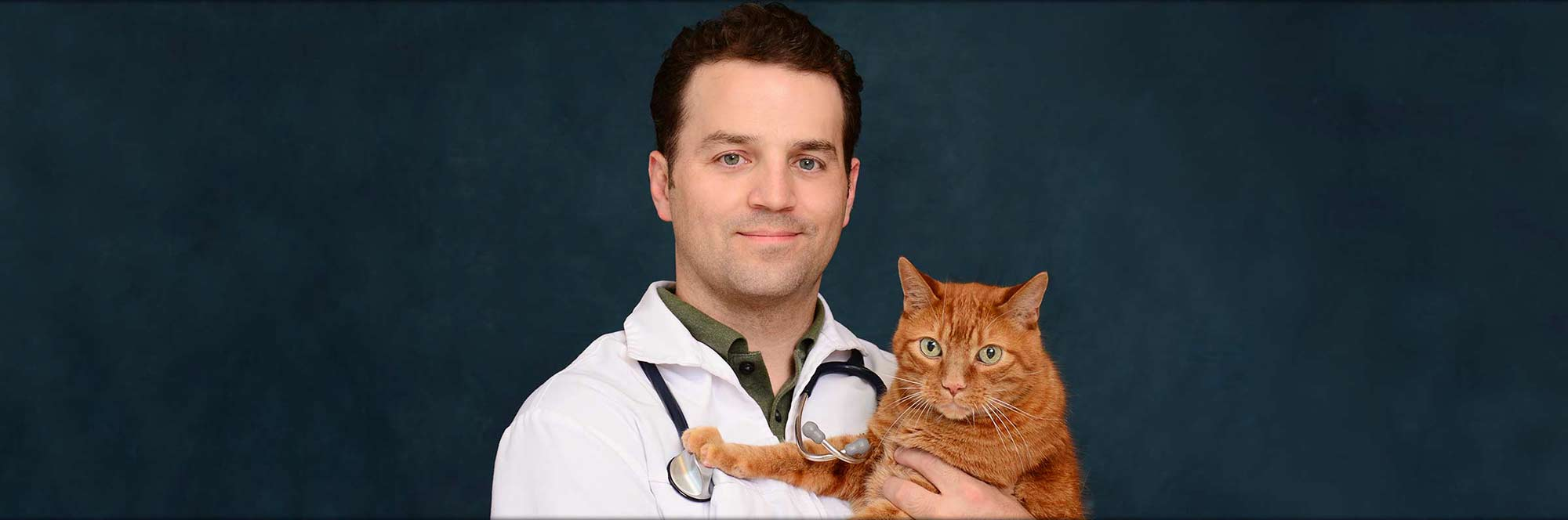 Meet Matthew Kleven, DVM at Greentree Animal Hospital