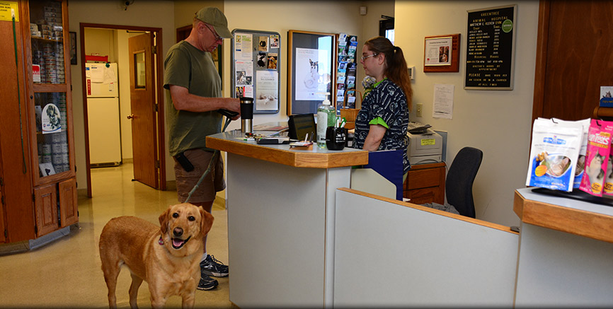 Drop off Appointments at Greentree Animal Hospital