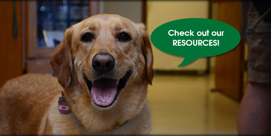Greentree Animal Hospital Resources