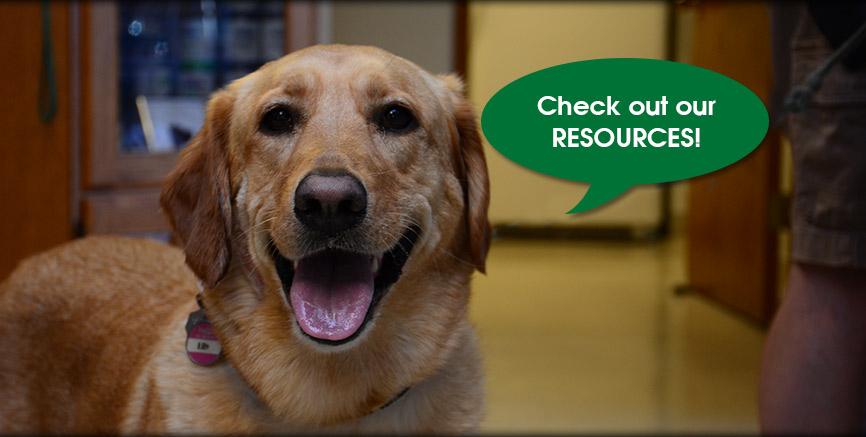 Greentree Animal Hospital Resources